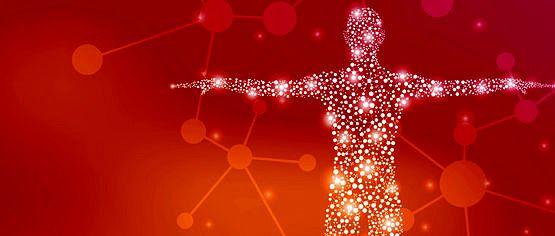 Fernblock® un aliado frente al estrés oxidativo, por el Dr. Salvador González
