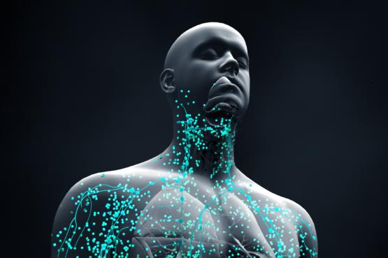 Modular la respuesta del sistema inmune para prevenir enfermedades